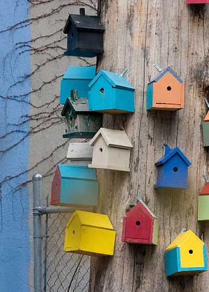 Bird Houses - Being Frugal and Feeling Abundant